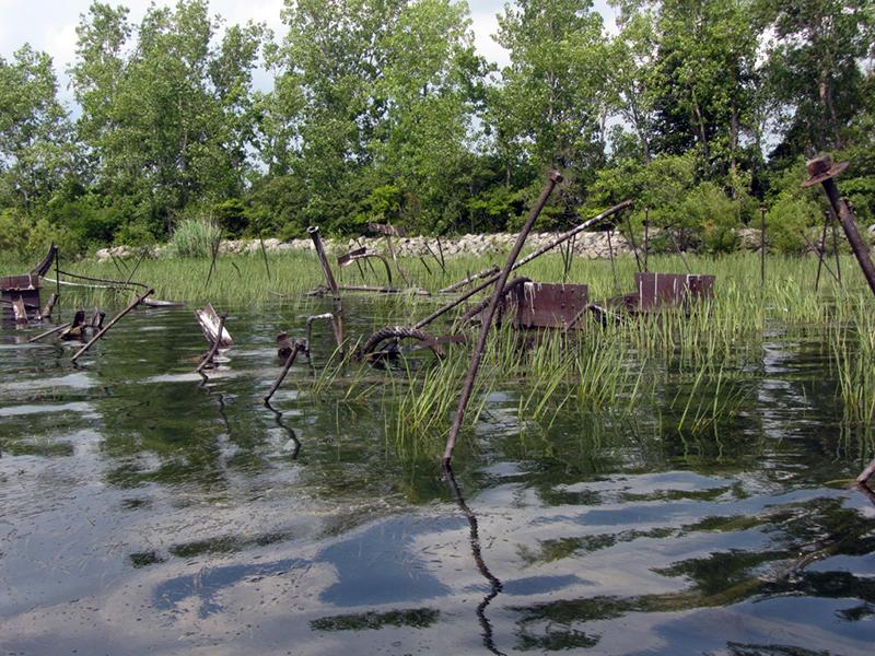 Dunbar Island Detroit River